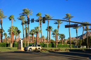 Palm Trees in Indian Wells - La Quinta Home Inventory Improves